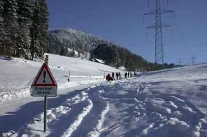 Amtsmitteilung der Gemeinde Hinwil zum Schlittelweg